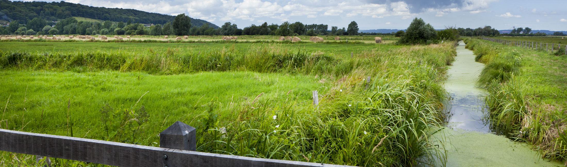 Collecte des déchets verts   Calendrier 2019 -Collecte des végétaux  Reprise de la collecte des déchets verts dans le centre bourg de 1